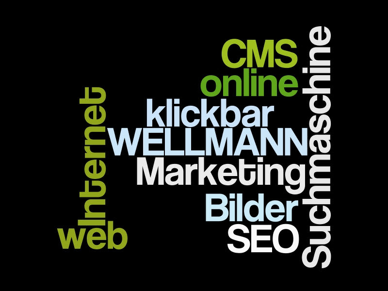 wellmann-web